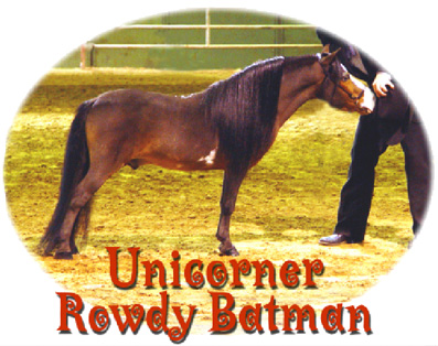Unicorner Rowdy Batman
